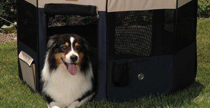 best portable dog playpen